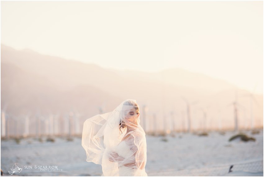 palm springs windmill wedding photography