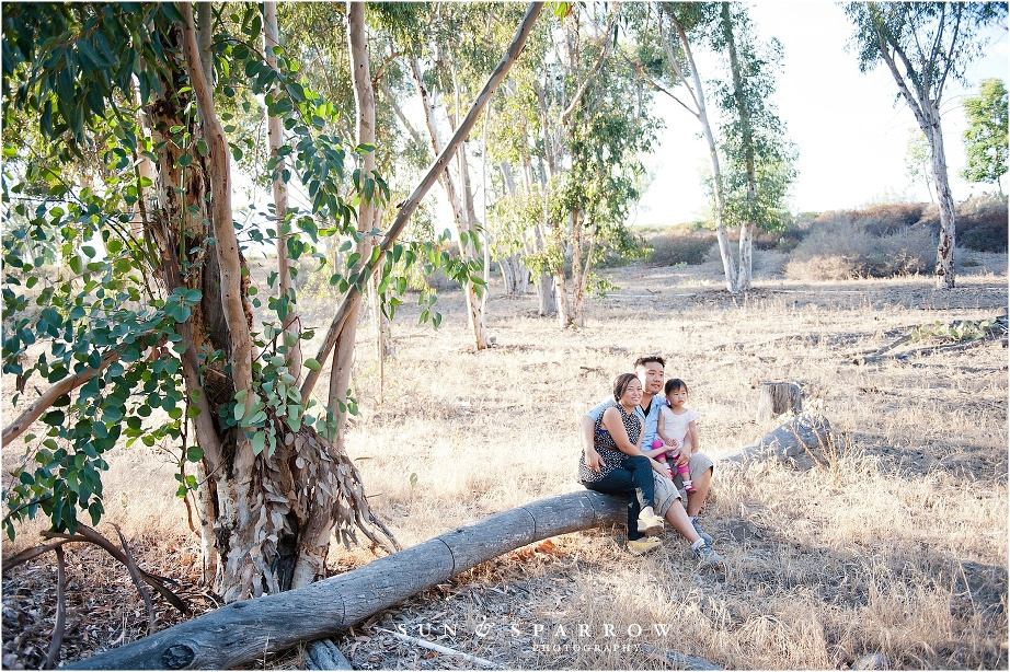 palos-verdes-holiday-mini-sessions__0047